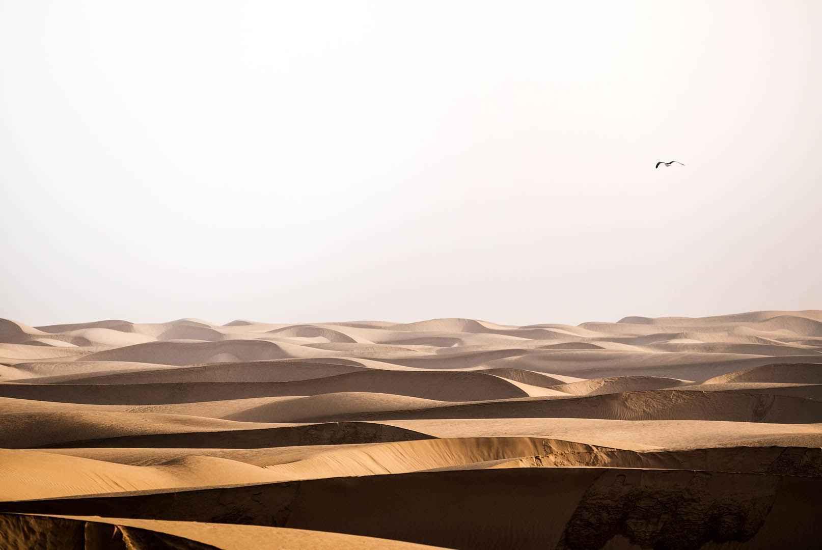 Du haut des dunes 2h30