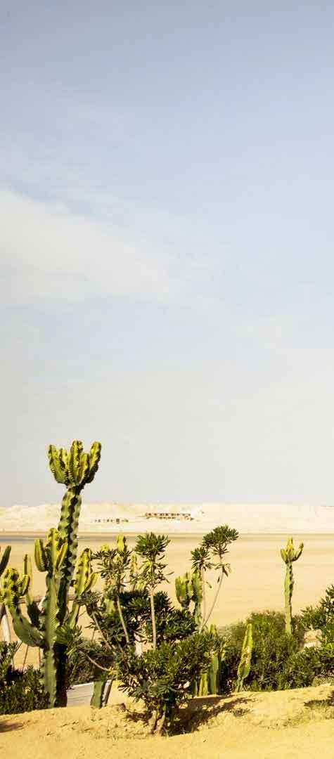 Dakhla Marruecos